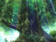 Земля зелени 25