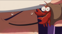 SPC24 - Hermit crab