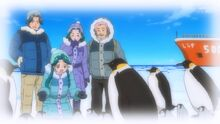 Minami and her family with the penguins