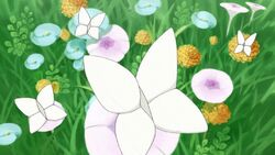 MTPC04 Butterfly