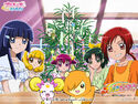 Pretty Cure Online SmPC wall smile 21 1 S