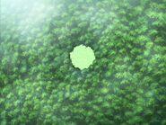 Фонтан деревьев 6