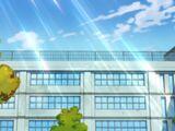 Средняя школа Пикаригаоки