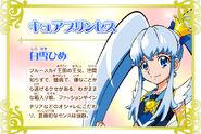 Cartel de Cure Princess en Pretty Cure All Stars New Stage 3