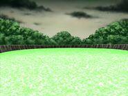 Фонтан деревьев 5