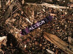 Alison Armband