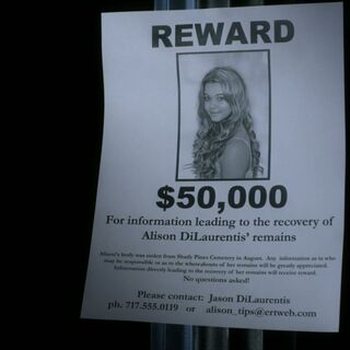 Alison's Missing Body Poster mentioning Shady Pines