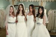 The-liars-as-brides