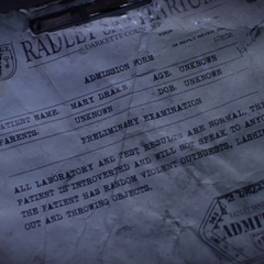 Mary's Radley File