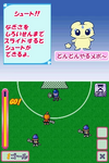 FwPCMH DS game lacrosse