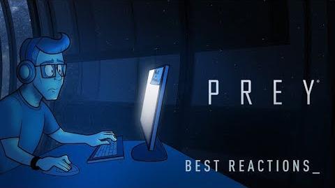 Best Reactions to Prey