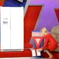 She picks the refrigerator.