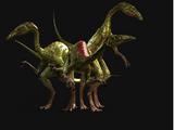 The Compsognathus