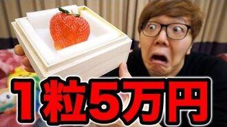 1粒5万円のイチゴを3粒食べて歩く15万円に
