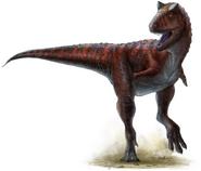 703px-Carnotaurus