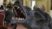 310px-Hyaenodon