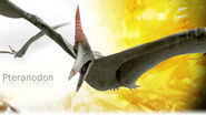 Pteranodon promo