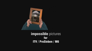 Impossible pictures