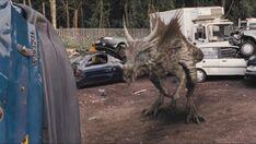 3x7 Dracorex 32