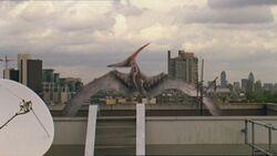 1x5 PteranodonOnRoofTop