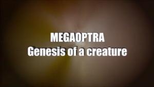 GenesisofaCreaturetitle