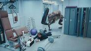 2x6 Predator 13