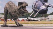 3x4 Giganotosaurus 67