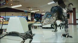 2x1 Raptor 83