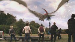 1x5 Pteranodon 88