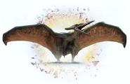 PNW Pteranodon