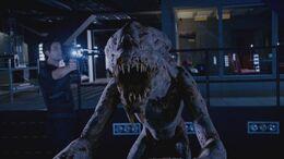 5x6 Predator 57