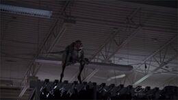 DaemonosaurusOnStoreShelf