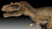PrimevalNewWorldAlbertosaurusCGIModel