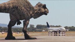 3x4 Giganotosaurus 20