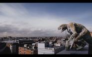 Microraptor 24