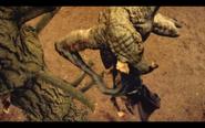Microraptor 4