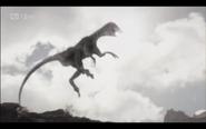 Raptor flashback