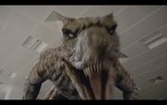 Microraptor 33