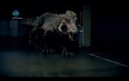 Kaprosuchus Series5 4