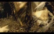 Microraptor 15