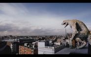 Microraptor 19