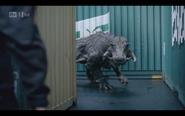 Kaprosuchus 20