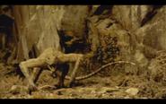 Microraptor 11