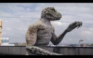 Microraptor 38