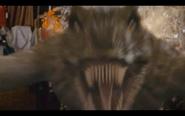 Microraptor 1
