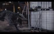 Kaprosuchus 7