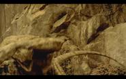 Microraptor 12