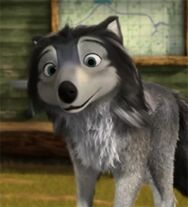 Handsome wolf Humphrey