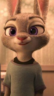 Judy apartment