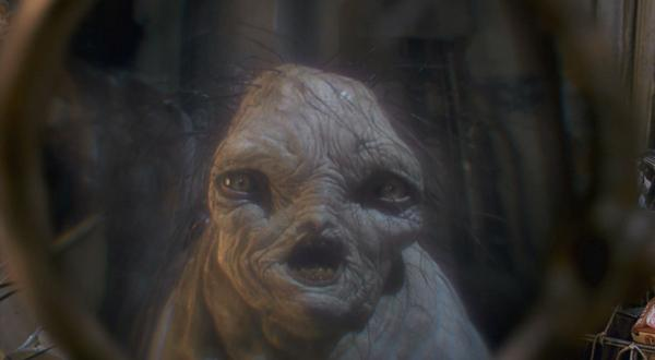 Fragglewump